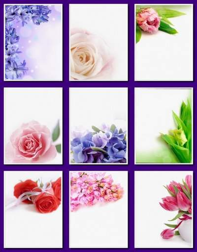 Flower background PNG - 98 free png floral backgrounds free download