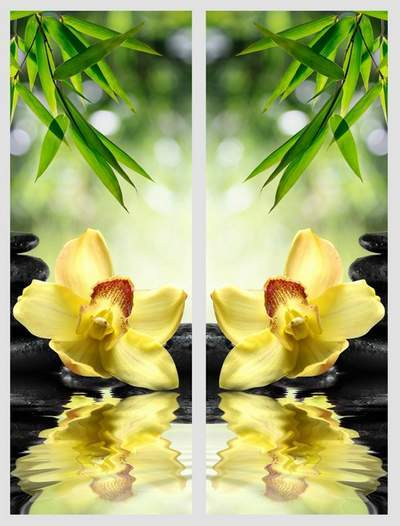 Flower Modular painting Diptych