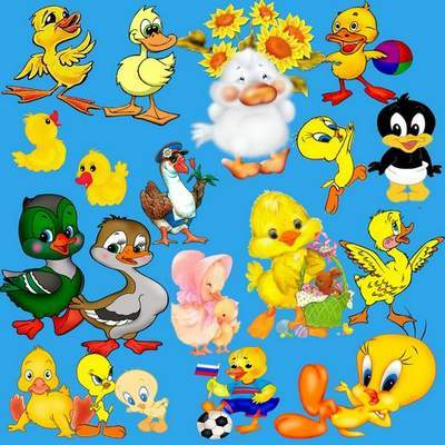 Cartoon Clipart PSD Ducks on a transparent background free download