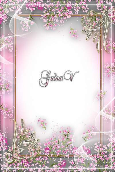 Flowery Photoframe Photoshop psd png Pink Tenderness free download