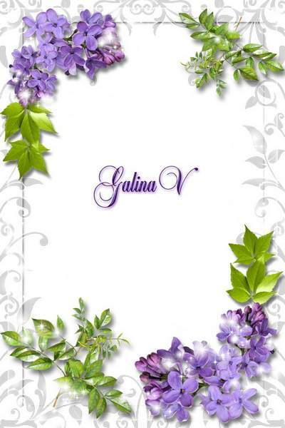 Photoframe Photoshop photo frame psd png Lilac Aroma free download