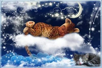 Baby Photoframe Dream In Clouds free download