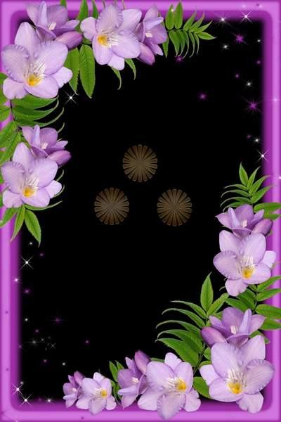 flower psd frame flower freshness free download