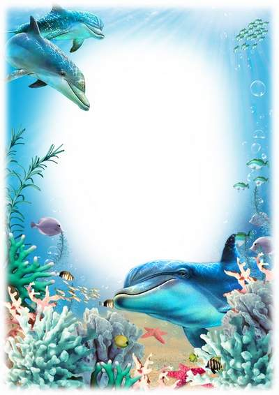 Sea Dolphins photo frames free psd download