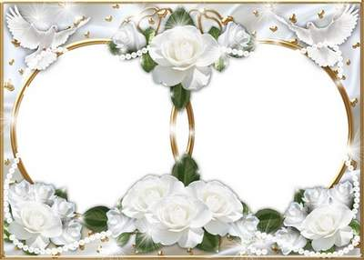 Wedding photo frame - The sea of white roses