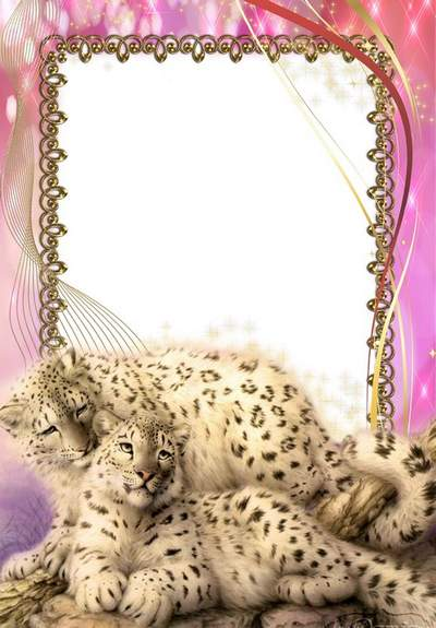 Animal frame psd download - Photoshop frame template with the bars