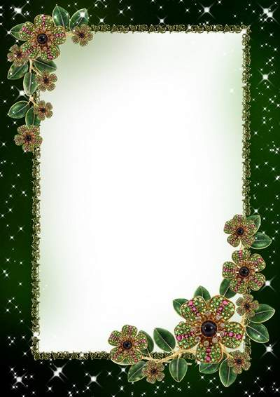 Glamorous photo frame with jewelry download - Precious beautiful flowers