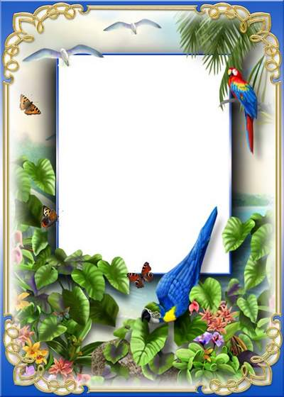 Nature frame for photoshop download - Tropical island
