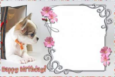Birthday photo frame - Happy Birthday! free download
