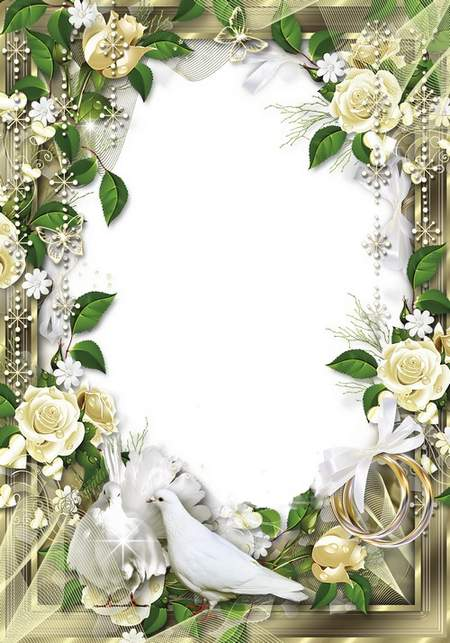 Wedding Frame  - Love and doves