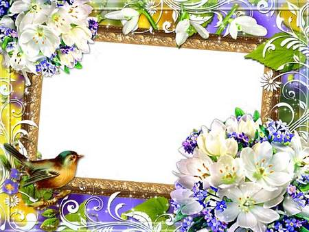 Bright floral frame for photos - spring flowers