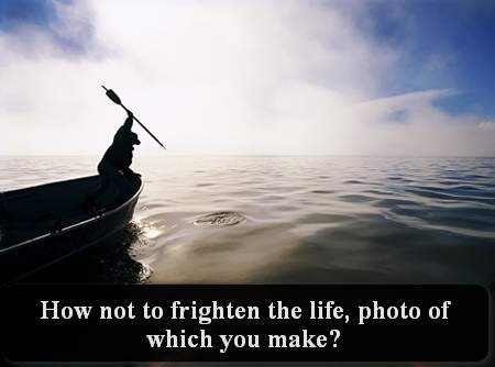 How not to frighten the life, photo of which you make?