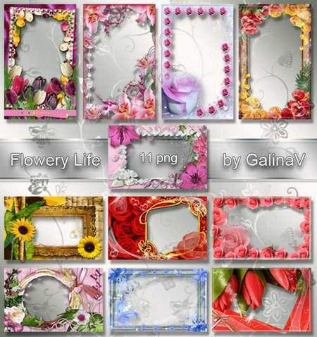 Free set flower frames download - 11 flower photo frames png