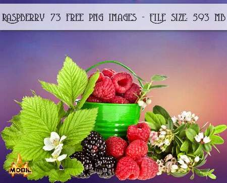 Raspberry png download, Raspberry 73 free png images (transparent background)