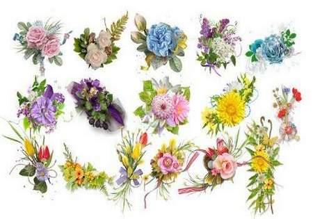Floral cluster download - 25 free png images (transparent background)