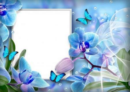 Nature frame download - flower photo frame template with orchids