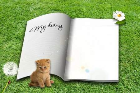 Frame for Photoshop - My Diary