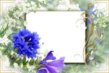 Photo Frame Sweet Summer Days download