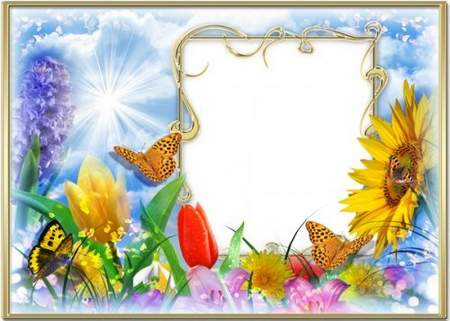 summer frame - Here and the summer to us came, we so waited for it ...
