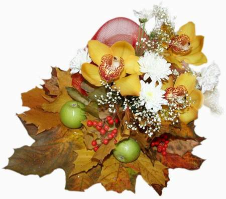 Autumn clusters on a transparent background online download (free png images)