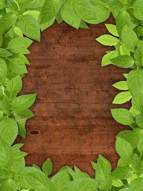 Wooden backgrounds download