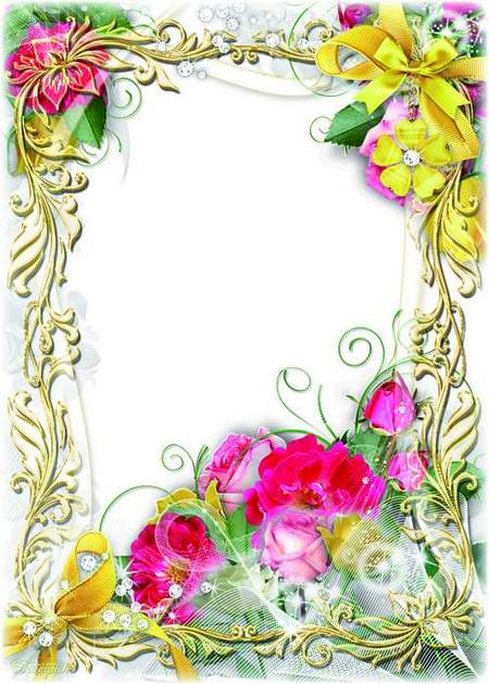 Rose flower frame for the photo - Beautiful and bright as the rose was