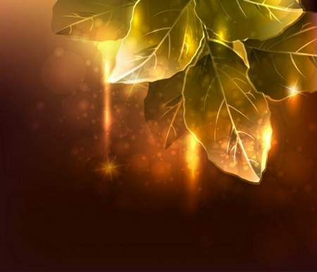 Autumn psd background