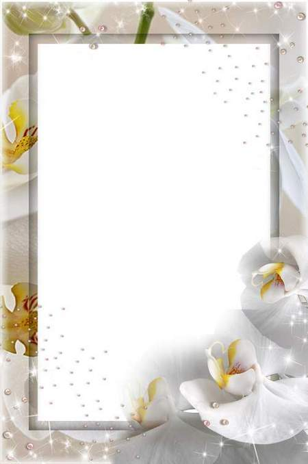 Wedding frame psd for a photo of the Bride - free download
