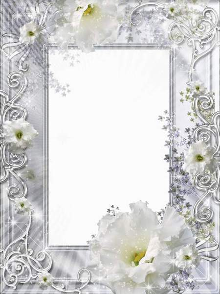 Wedding frame for a photo - Fine bride