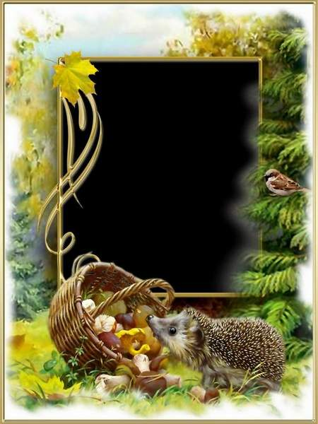 Nature photo frame download - autumn in the forest (free frame psd)