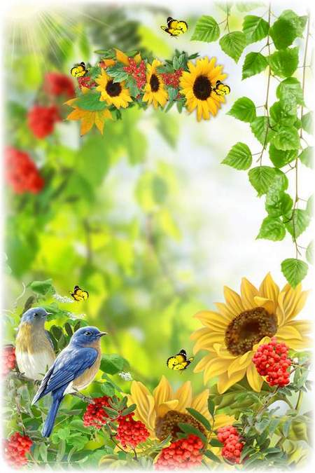 Nature summer photoshop collage psd