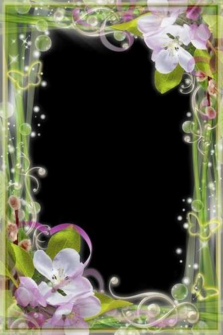 Spring Floral Photo Frames download - Charm & Tenderness (free frame psd)
