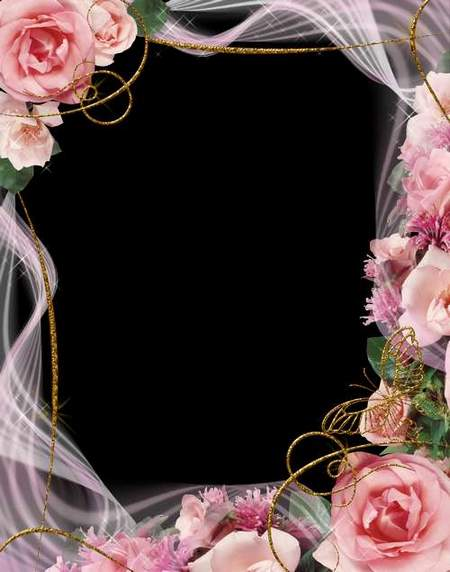Pink roses frame png download - free photo frame png