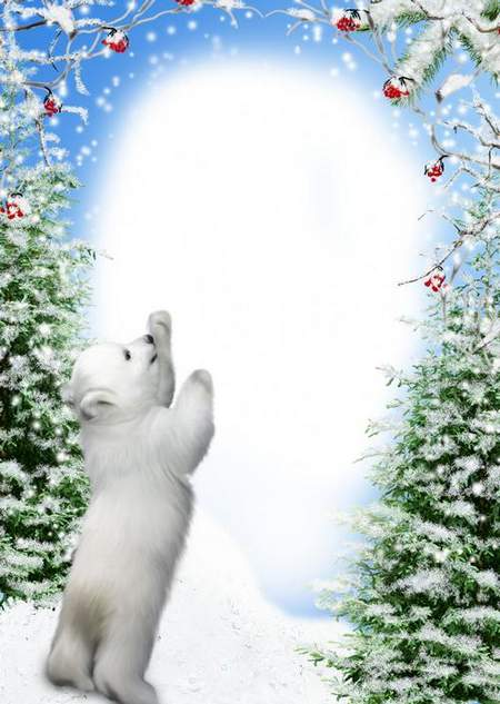 Winter Photo Frame - Snowy Winter (free 2 frame psd + free 2 frame png)