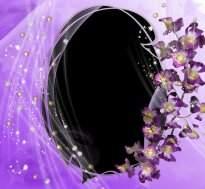 Delicate floral frames for photoshop download - free10 frames png