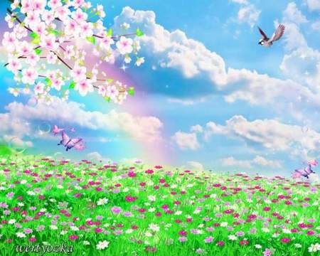 PSD a source download - the Spring rainbow