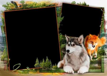Summer Photo frames In the wild forest download - (free frame psd + free 4 frame png)