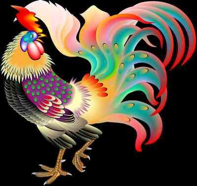 Rooster clipart png images - free 35 png images download