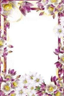A set of frames for Photoshop - Dawn