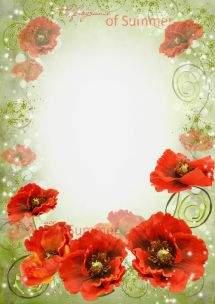 Set of floral frameworks for Photoshop - Summer flowers