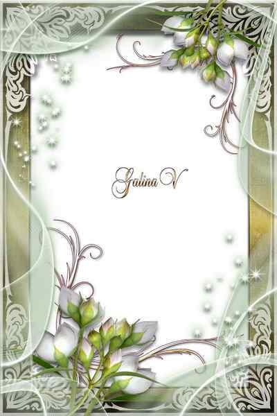 Frame for Photo - White Flower Buds ( free photo frame psd + free photo frame png) download