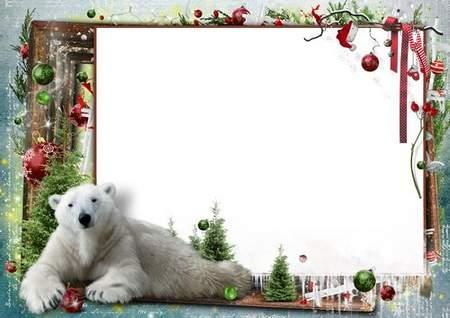 Christmas Photo frame Polar bear ( free photo frame psd free 4 photo ...