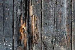 Old wooden boards free download, 12 JPEG, 3456 x 2304 px, 4752 x 3168 px