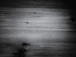Collection of wood textures of brown and gray shades