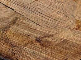 Wood texture pack 11 jpeg, 2300 x 1725 px
