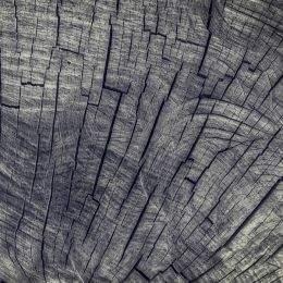 Wood UHQ JPG Textures