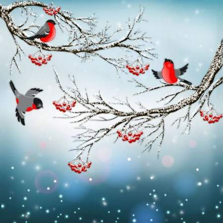 Winter PSD source with birds