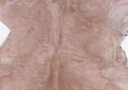 Texture Fur ( free textures, free download )