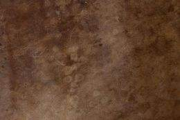 High-quality leather texture