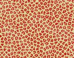 Texture Faux Fur free download ( free textures, free download )